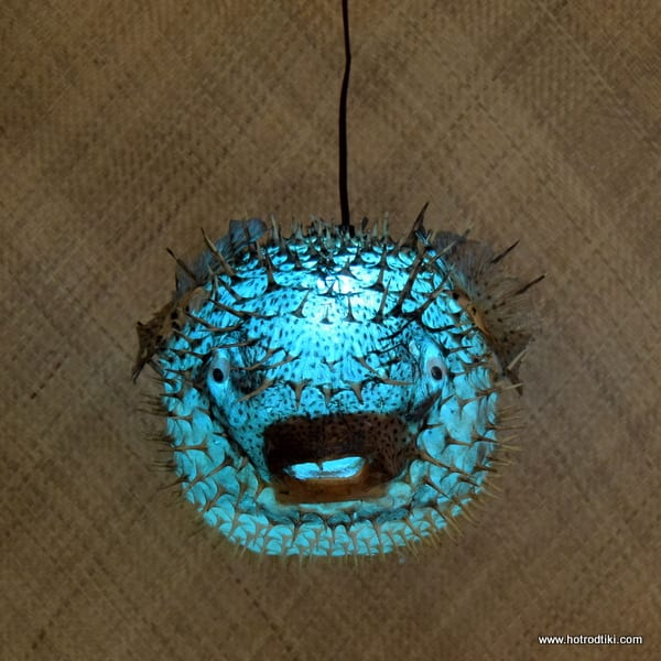 Puffer fish lamp blue extra large 18 20 approx for Puffer fish lamp