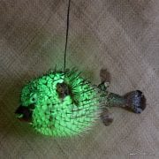 Extra Large Puffer Fish Lamp Green 3