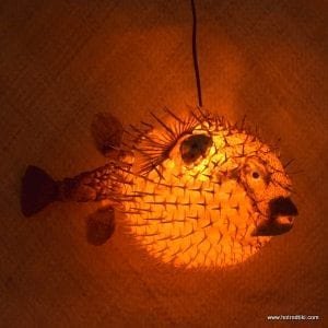 Home hot rod tiki for Puffer fish lamp
